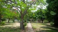 Jardim da EBMI