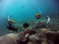 fundo mar